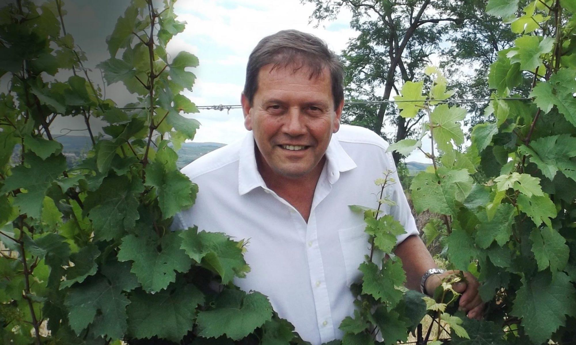 Weingut am Wechselberg Inh. Rudolf Völker